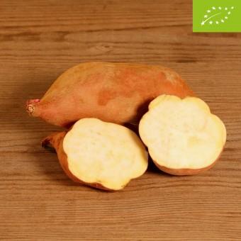 Patate Dolci (pasta gialla)
