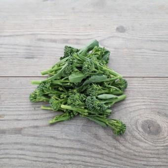 Mugnoli ORGANIC (Brassica oleracea)