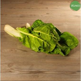 Biete Organic