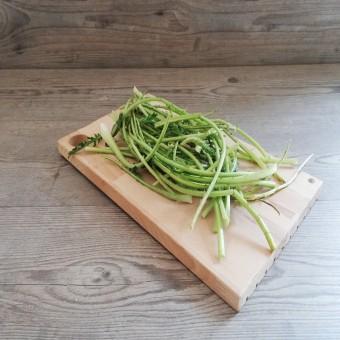 Cardo Selvatico (Mariano) Organic