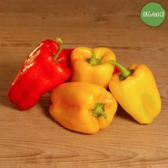 Peperoni verdi e rossi Organic - Biodinamica Specchia