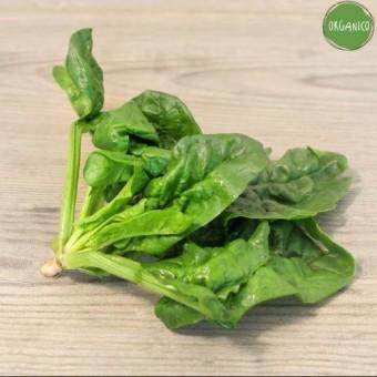 Spinaci Organic - Biodinamica Specchia