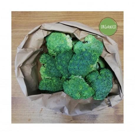 Cuori di Broccolo ORGANIC - Sail