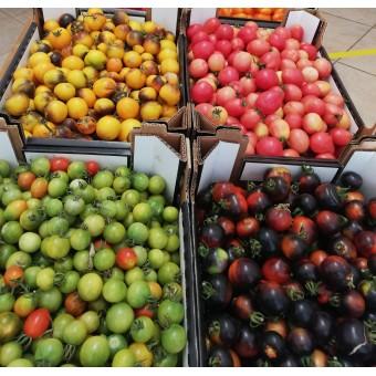 Mix di pomodorini R-Etikapuglia