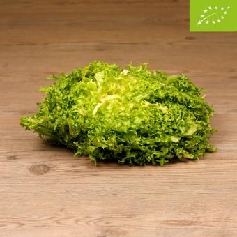 Insalata Riccia Organic -...