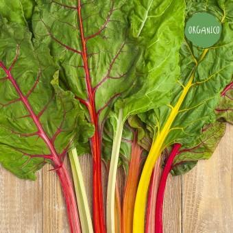 Biete a Coste Colorate Organic