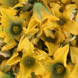 Zucchine chiare con fiore...