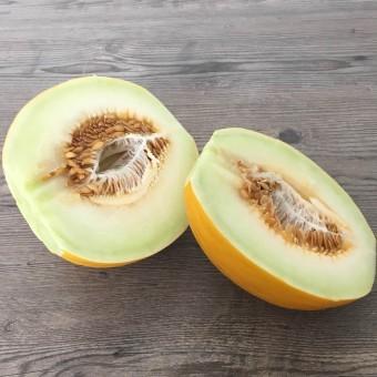 Melone Gialletto Organic - Karadrà