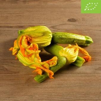 Zucchine chiare con fiore BIO
