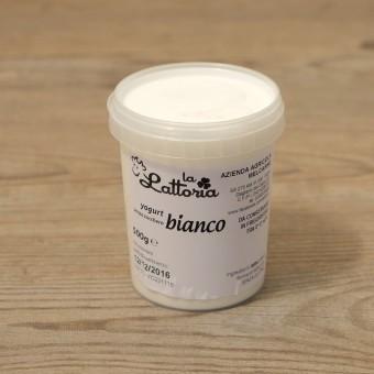 Yogurt bianco senza zucchero (Il Cremoso)